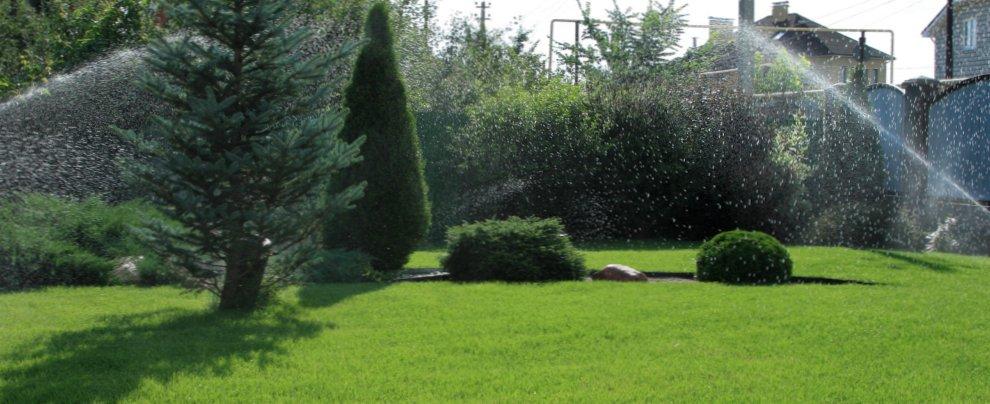 Как организовать полив газонов?